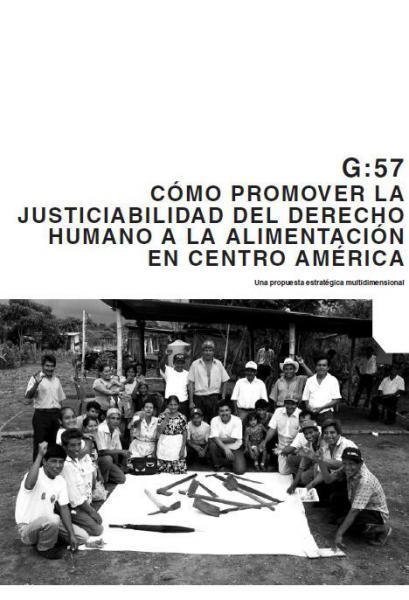 Cómo promover la justiciabilidad del Derecho Humano a la Alimentación