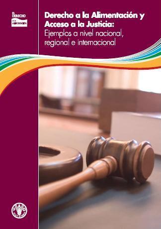 Derecho a la Alimentación y Acceso a la Justicia: ejemplos a nivel nacional, regional e internacional