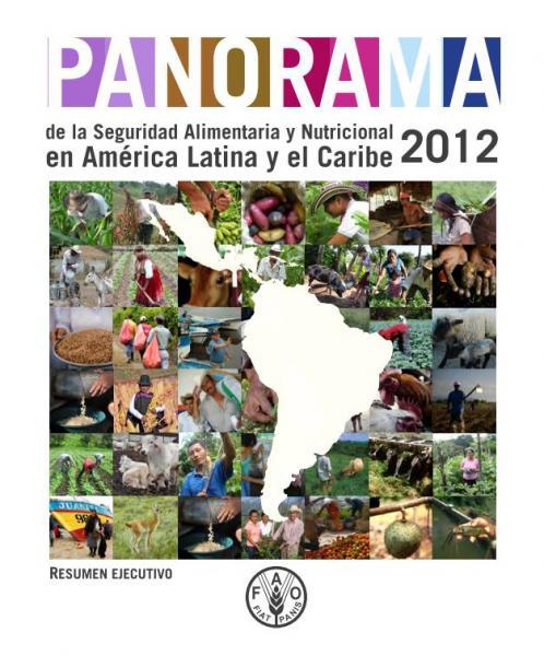 Panorama de la Seguridad Alimentaria y Nutricional en América Latina y el Caribe 2012. Resumen Ejecutivo.