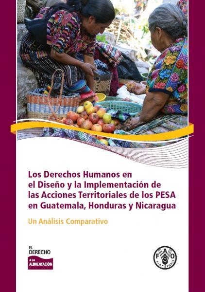 Los Derechos Humanos en el Diseño y la Implementación de las Acciones Territoriales de los PESA en Guatemala, Honduras y Nicaragua