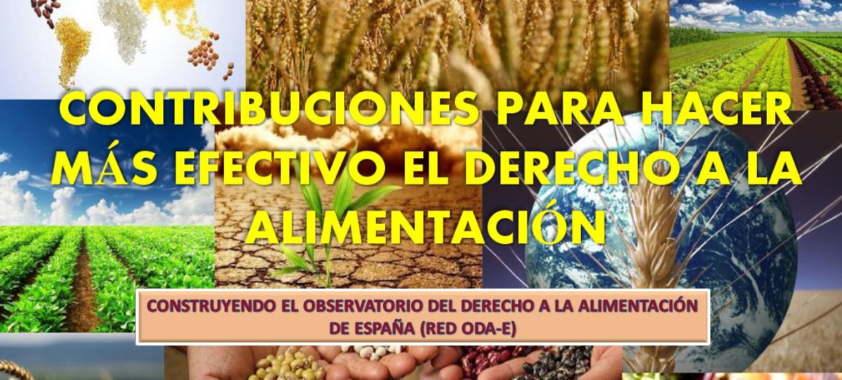 """Jornadas: """"Contribuciones para hacer más efectivo el derecho a la alimentación"""""""