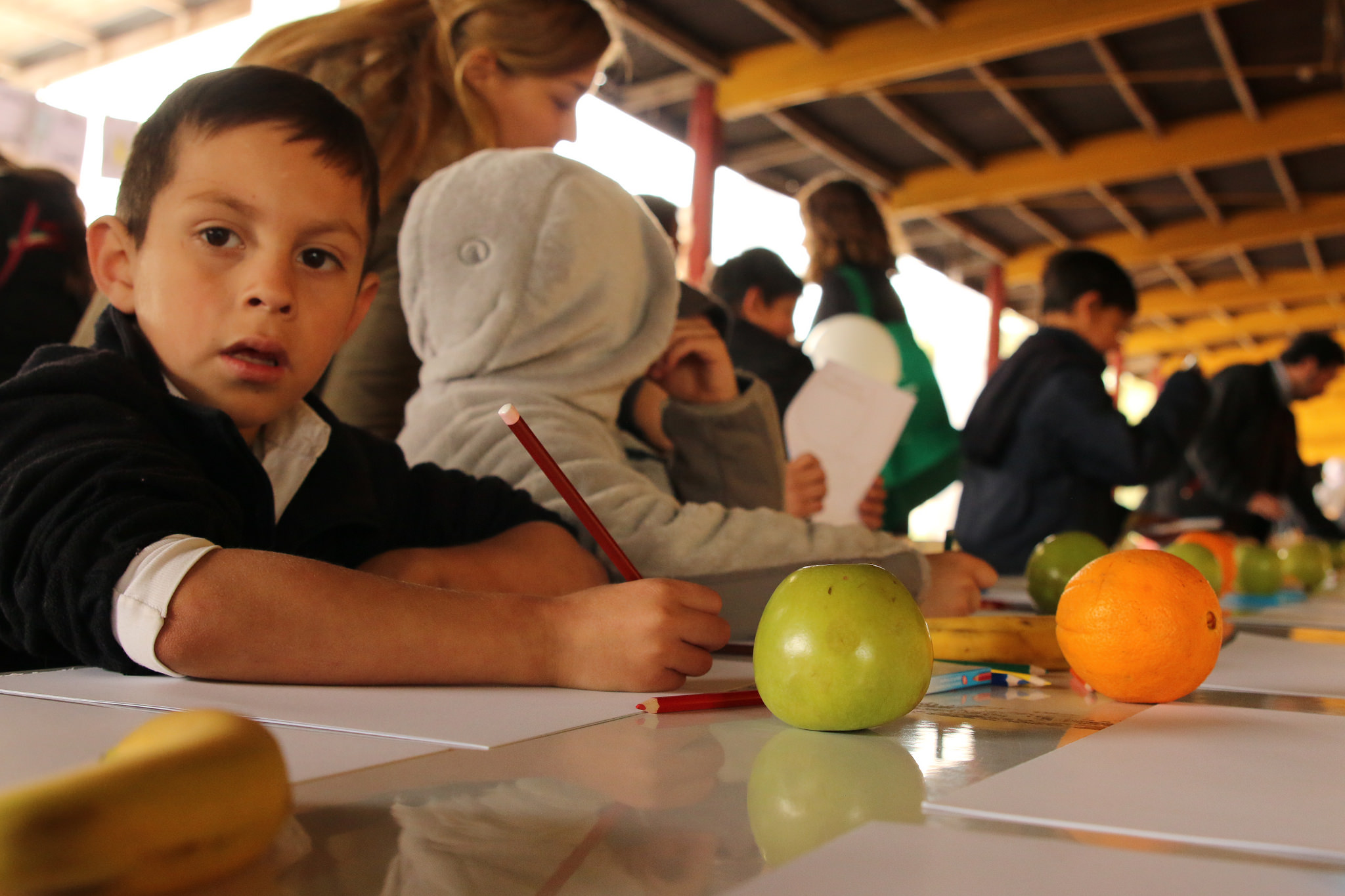 Observatorio del Derecho a la Alimentación lanza convocatoria de investigaciones 2018